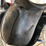 saddle 1 before